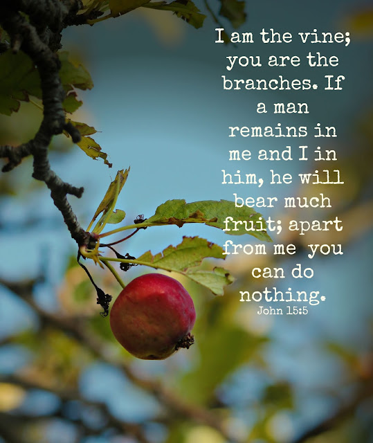 inspiring verse, bible verse, God's word, http://bec4-beyondthepicketfence.blogspot.com/2015/08/sunday-verses_22.html