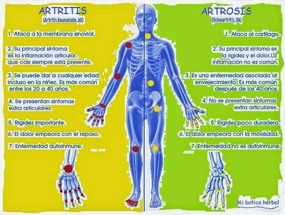tratamiento natural para la gota enfermedad aumento de niveles sericos de acido urico acido urico jamon york