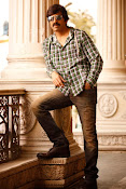 Ravi Teja photos from Kick 2-thumbnail-2