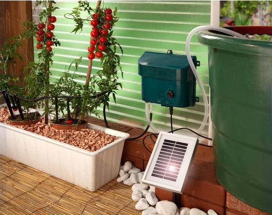 jardín solar: riego por goteo con energía solar en mi huerto urbano