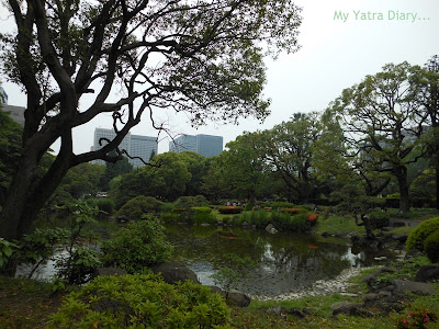 View from the Hibiya Garden - Tokyo, Japan