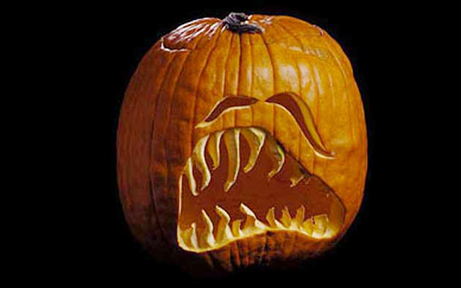 Pumpkin carving ideas for halloween 2014 Pumpkin carving designs photos