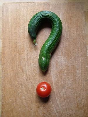Pertanyaan Bagi Pihak Catering