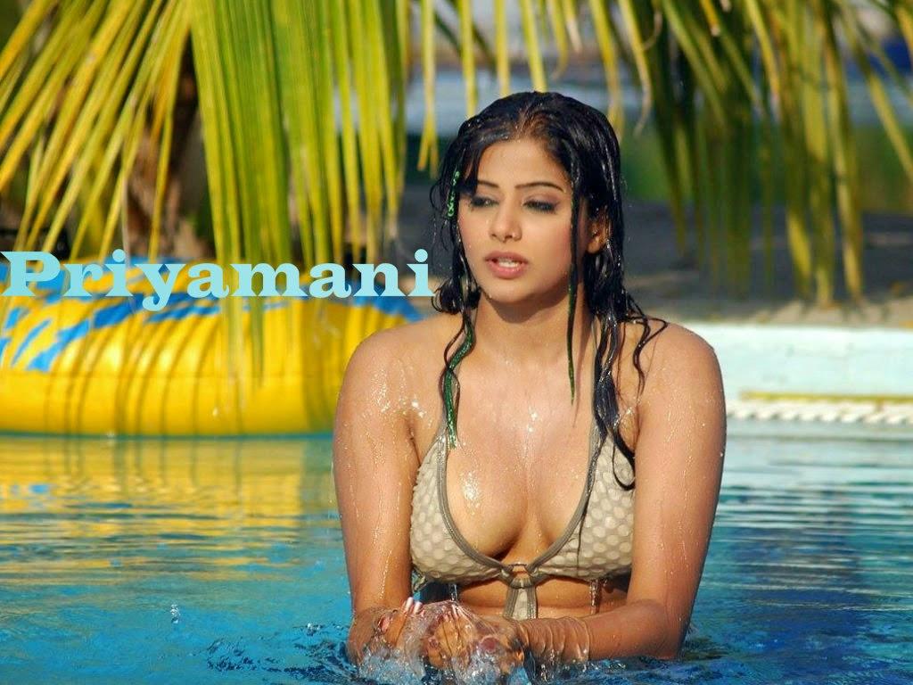 hot south indian actress priyamani hd bikini photo