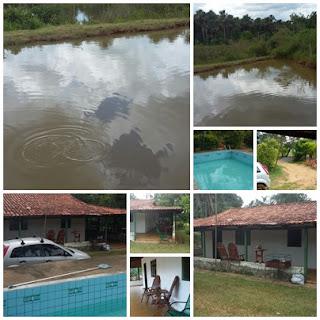 Chácara de 1 alqueire a 55 km de Goiânia - em Bela vista de Goiás