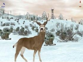 Deer Hunter 4 Cheats