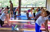 Yoga teacher training bali - 200 hour 500 hour yoga teacher training abroad