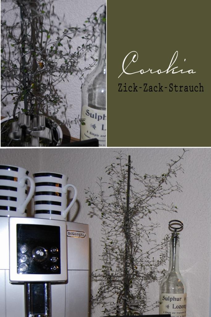 Zick zack strauch bei stilreich s t i l r e i c h blog - Stilreich instagram ...