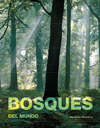 BOSQUES DEL MUNDO