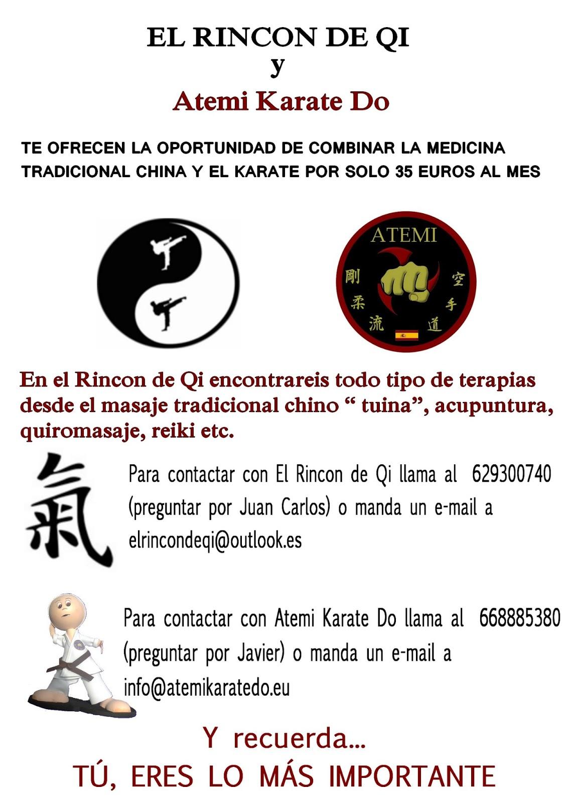 Atemi Karate-Do: 2013