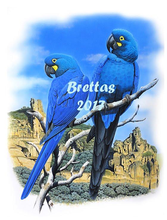 Aves Ameaçadas