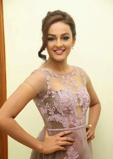 Seerat Kapoor Stills at Tiger Movie Audio Launch 3.jpg