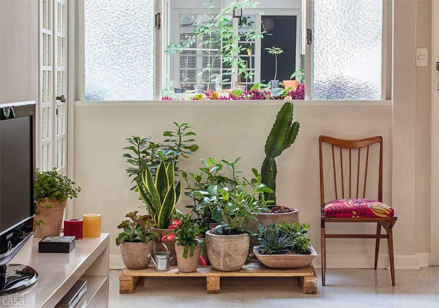 VIDA Um jardim feito com plantas resistentes de pouca manutenção