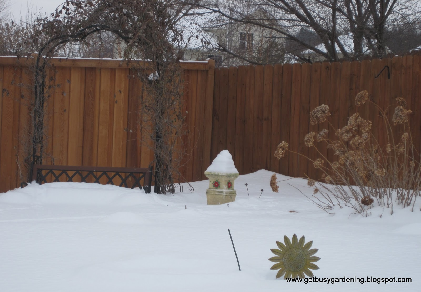 winter gardening tasks