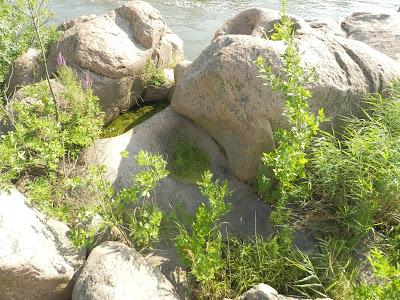 вид на скалу с тремя колодцами в граните и на реку Южный Буг