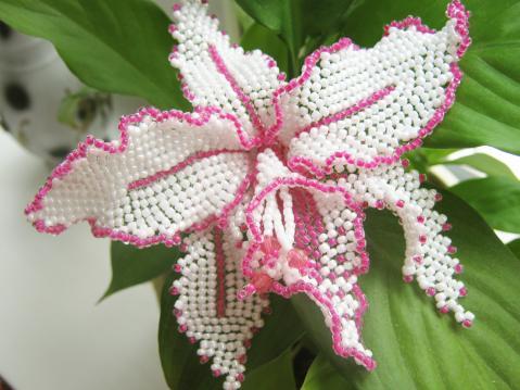Мк цветы из бисера. схема плетения орхидеи из бисера. схема цветка орхидея из.бисера для детей. колье воздушка из...