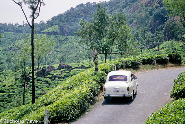 natural munnar tourist attraction by car