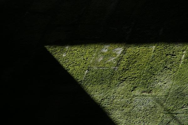 Los paisajes escritos umbral de invierno for Jardin umbrio valle inclan