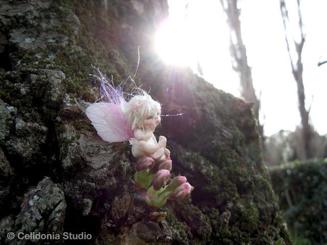 micro fairy che pensa