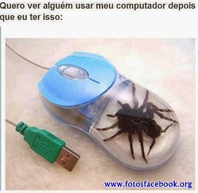 O mouse e a aranha