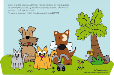 NO COMPRES, ADOPTA!