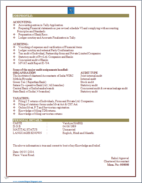 RESUME BLOG CO: EXCELLENT RESUME OF CA (CHARTERED ACCOUNTANTS) FRESHER
