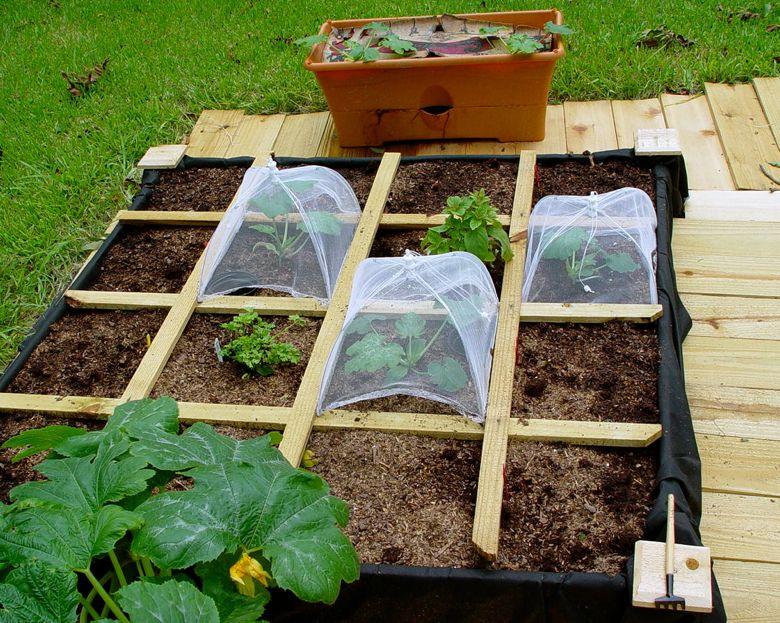 Llyynn Lots Of Square Foot Gardening