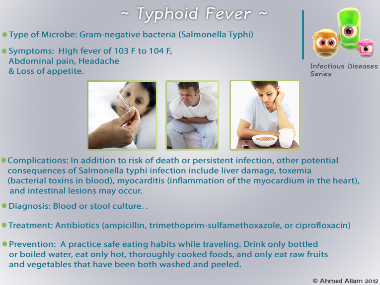 typhoid fever and contrast organizer Typhoid fever (tf) is an enteric disease and one of the major health problems in the developing countries, fostered by many interrelated factors, including increased urbanization, inadequate supplies of clean water, antibiotic.