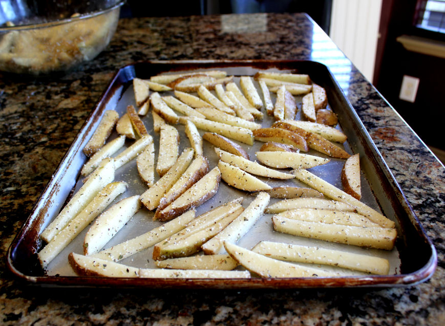 how to cook fries in an oven what mode