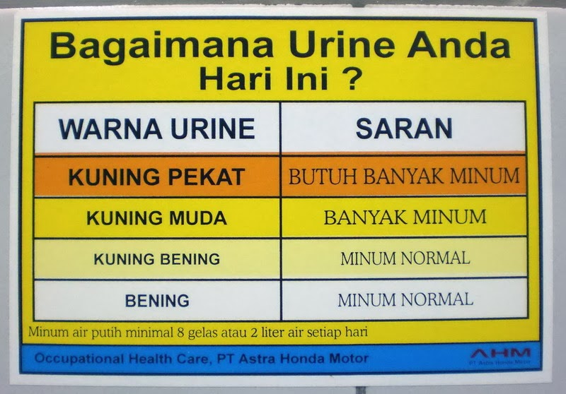 tabel warna urine