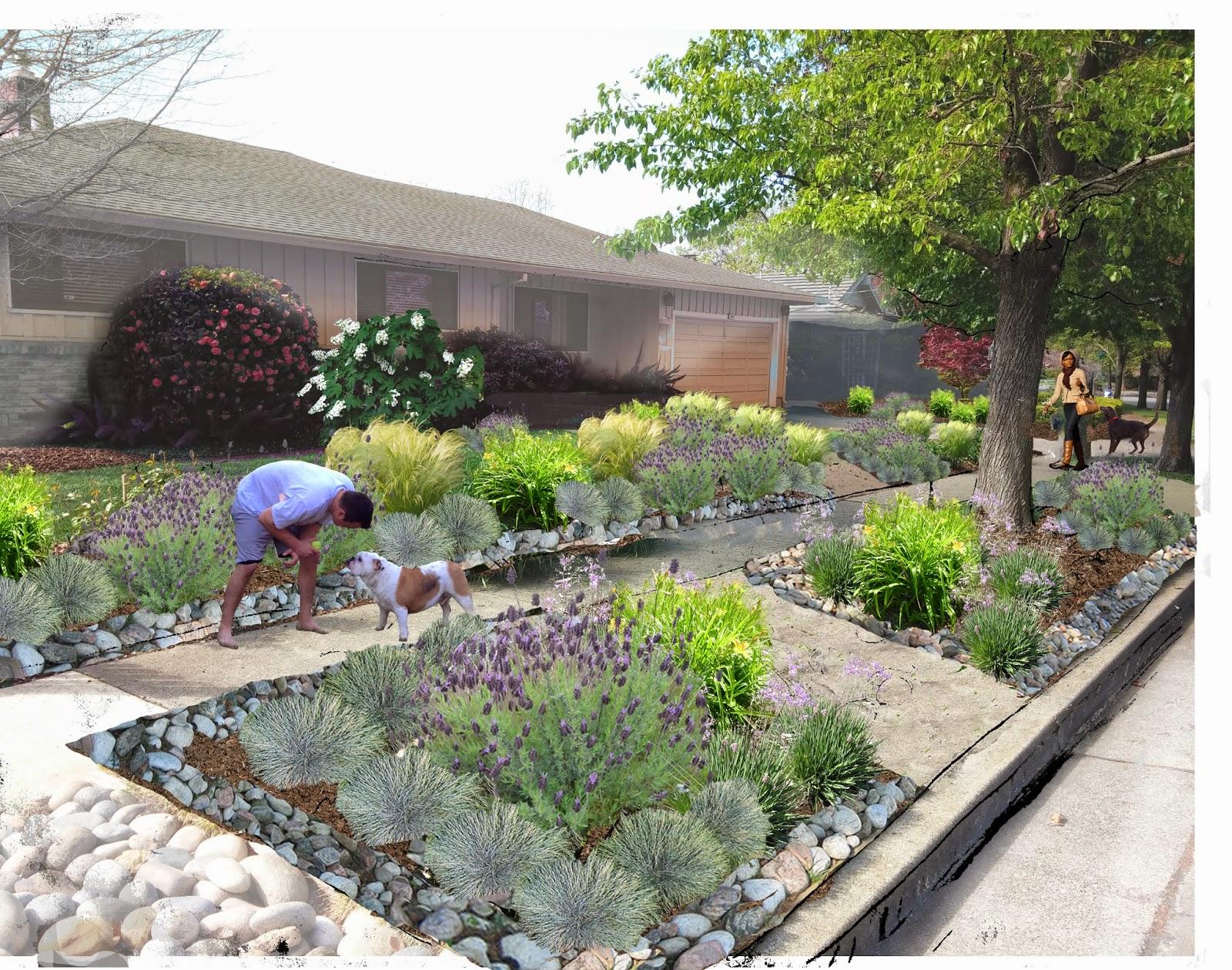 Decanting Landscape Design