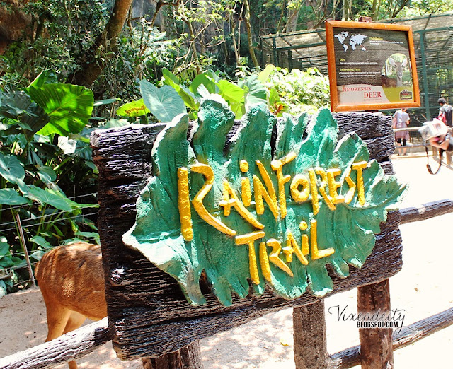 Rainforest trail Lost World Tambun Petting Zoo