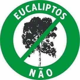 Eucaliptos, Não!