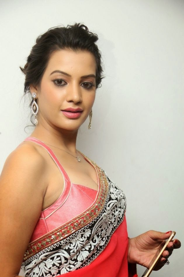 Diksha Panth In Saree Spicy Gallery