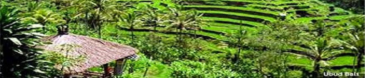 Bali Daily Tours | Liong Guide : Get an amazing experience tour with us, www.liongbali.blogspot.com