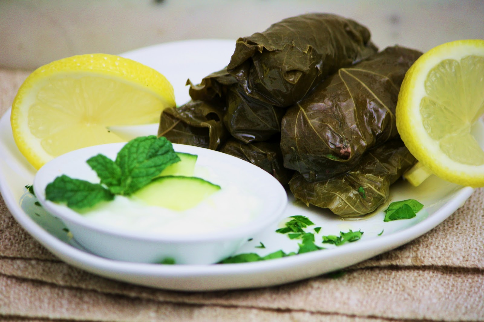 ... ! Dolma Stuffed Grape Leaves with Ground Lamb ~ Up Next, Turkmenistan