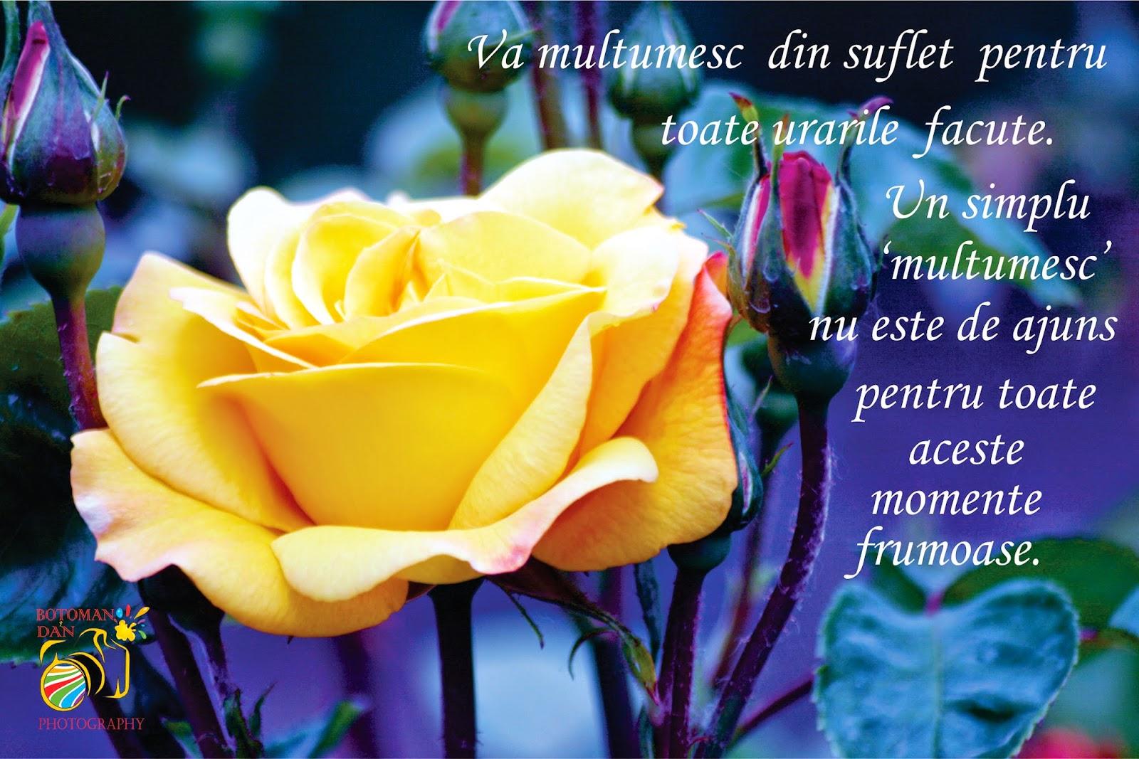 Imagini Cu Mesaje De La Multi Ani >> La multi ani mamici (3) - Pagina 26