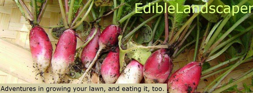 EdibleLandscaper