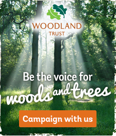 Help Save Woods and Trees