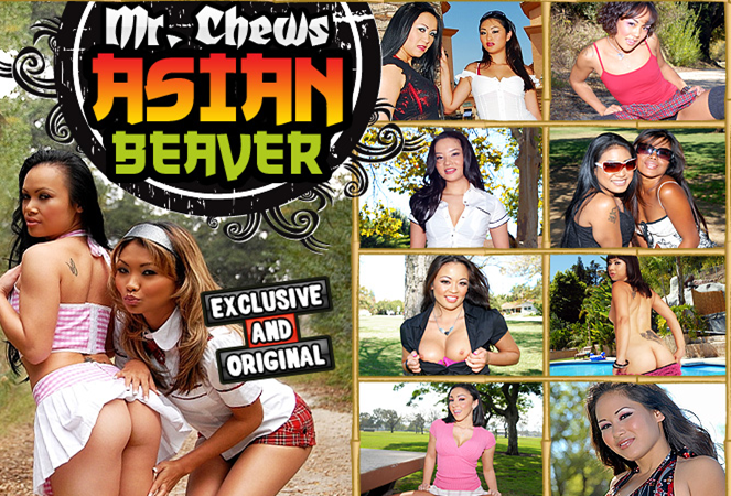 Free Porn Passwords MR CHEWS ASIAN BEAVER 1st September 2015