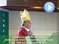 VIDEO DE LA HOMILÍA DEL SR OBISPO, DEL DÍA 28 DE JUNIO DE 2015