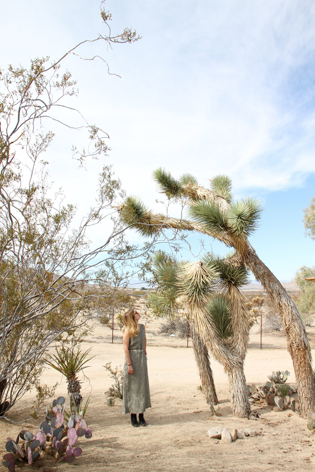 Joshua Tree Green Acres Ranch