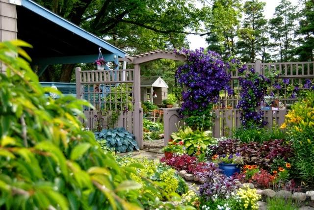 A colorful hosta garden
