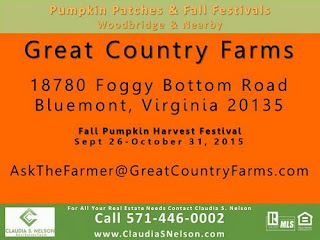 Pumpkin Patches near Woodbridge Virginia 2015, Great Country Farms Bluemont VA