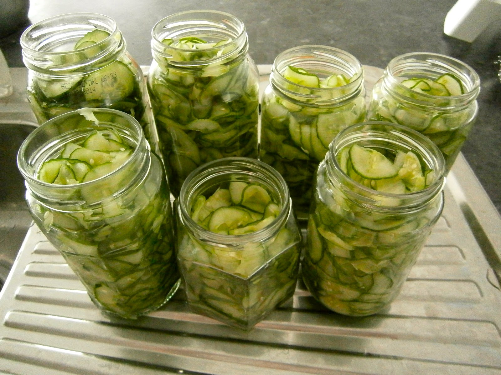 cucumber slices packed into sterilized jars my 12 cucumbers and
