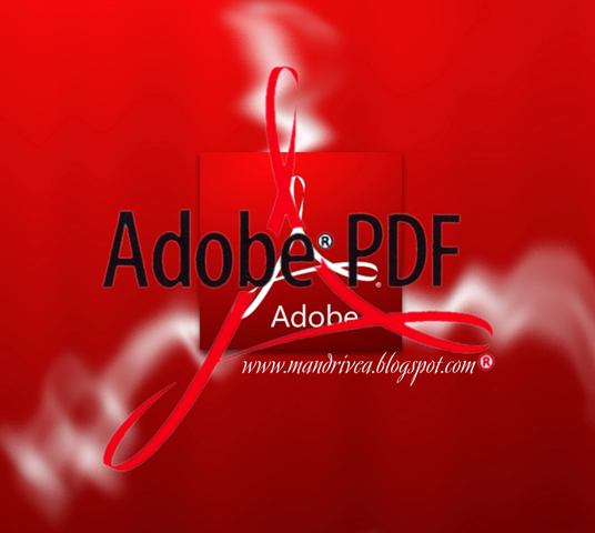 Download Adobe Reader 11 Standalone Installer