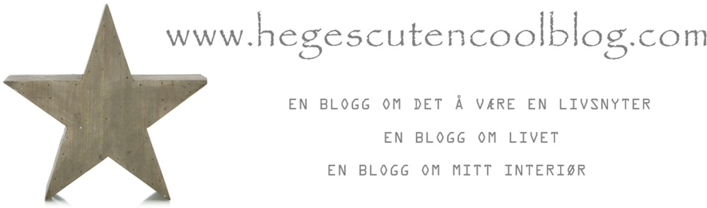 www.hegescutencoolblog.com
