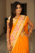 Midhuna New photo session in Saree-thumbnail-7