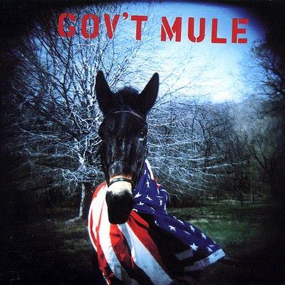 A rodar XI                          - Página 20 Govt-mule-govt-mule-