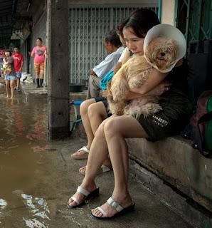 น้ำท่วมกรุงเทพฯ2011